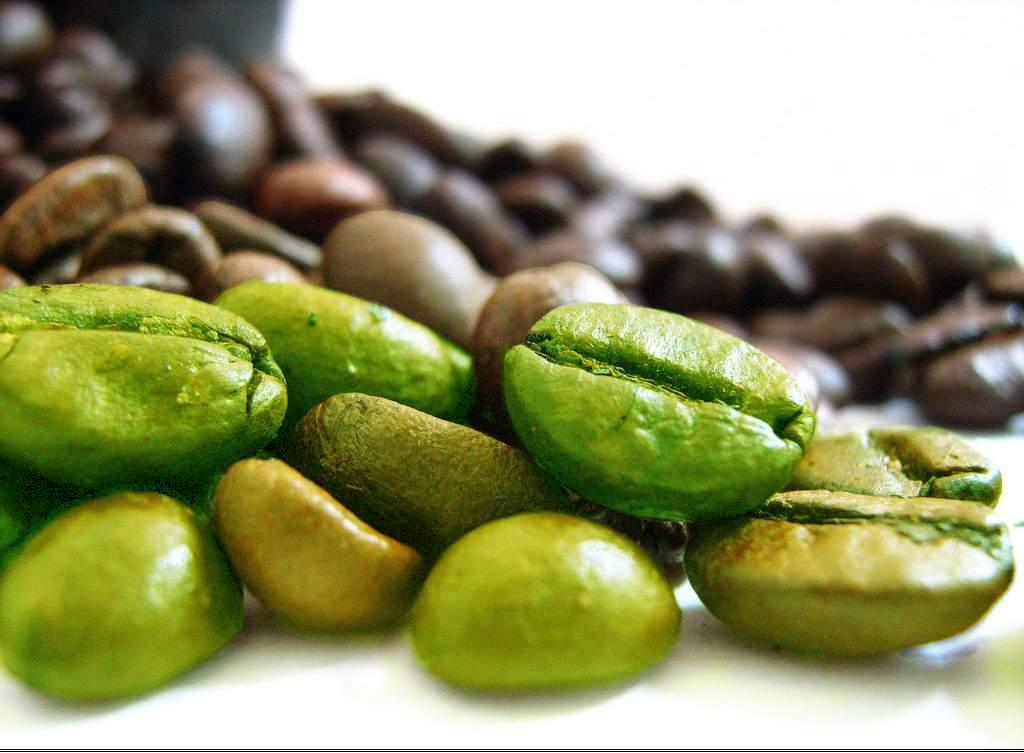 zeleno_kafe3