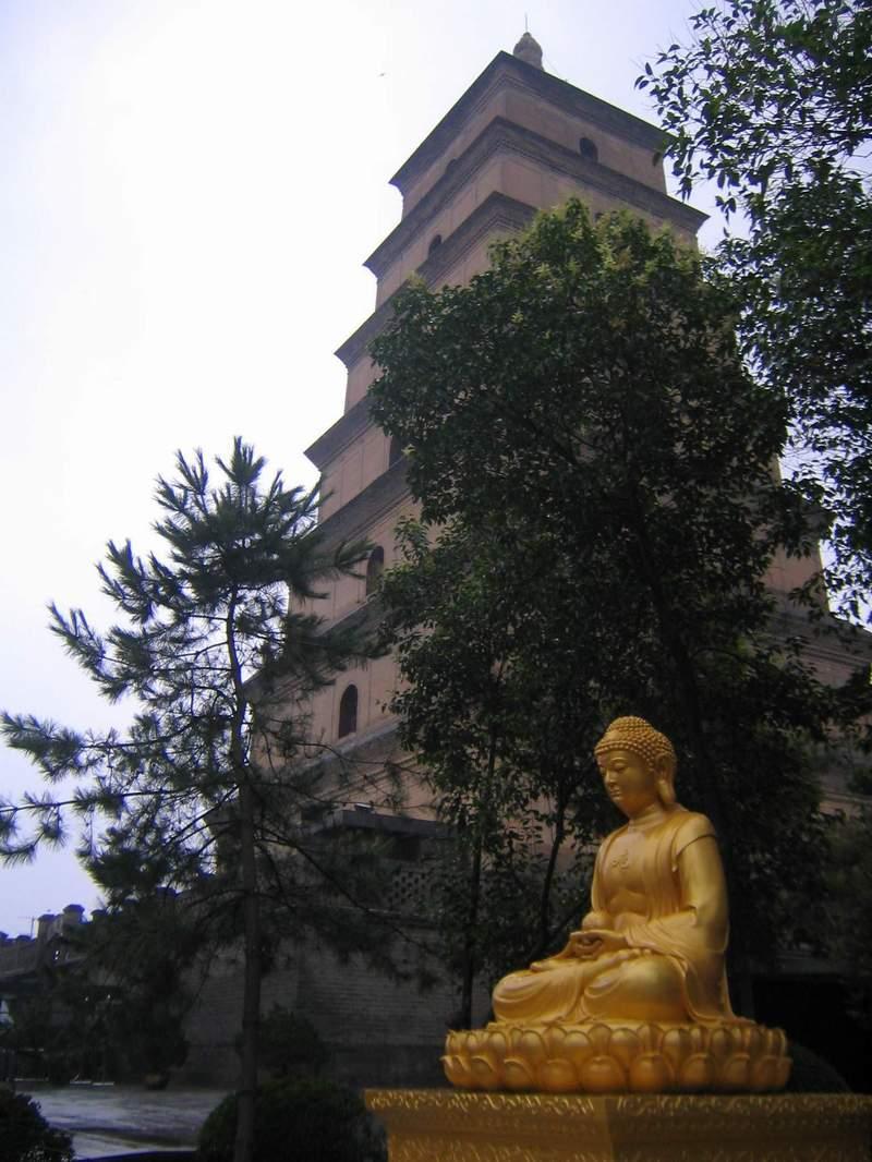 Пагодата на голямата дива гъска.