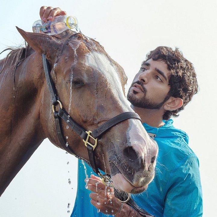 Принцът е изкусен майстор в обяздването и върховата езда.
