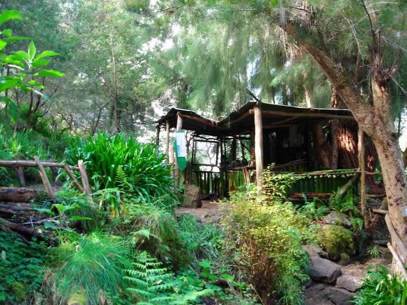 3. Магазинът на перма семейството на остров Реюнион, където туристи си купуват сладка, конфитюри, билки и чай.