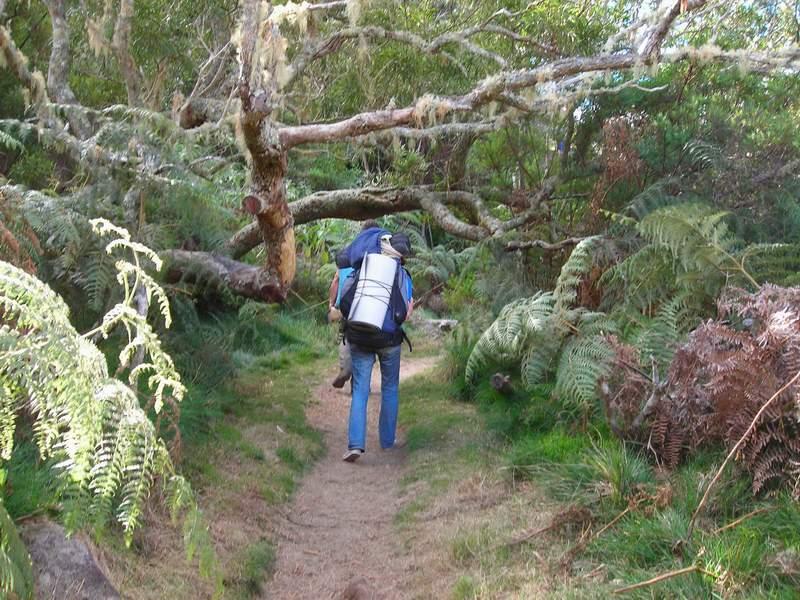 До пермафамилията на остров Реюнион може да се стигне само по този начин - пеша, по тясна пътечка.