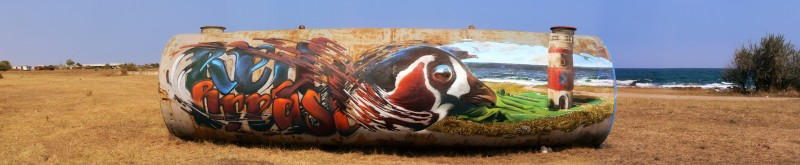 "Проект Save Ground Red Breast (""Спасете червеногушата гъска"") върху стари цистерни близо до Шабла."