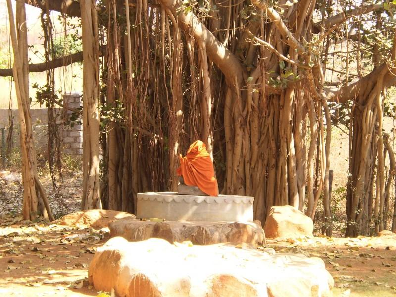 Уникална снимка – човек в медитация от 28 дена, без да мръдне! – гр. Бангалор.
