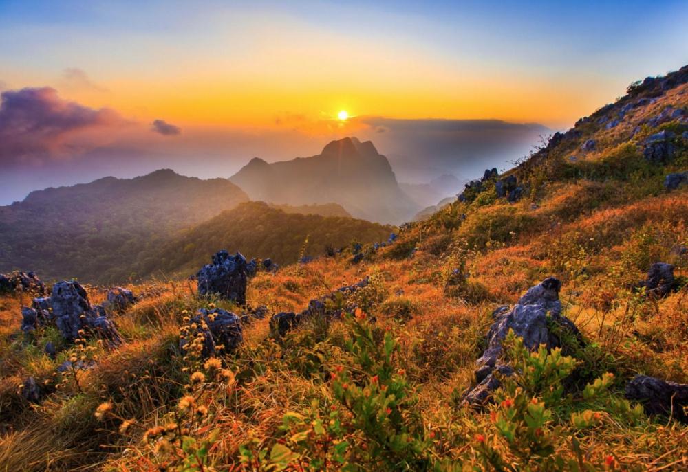 © Thanapol Tontinikorn.